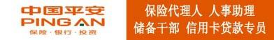 中国平安(18069815789)_大江东人才网